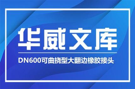 DN600可曲挠型大翻边橡胶接头(图文)——华威文库