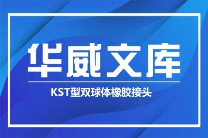 KST型双球体橡胶接头(图文)——华威文库
